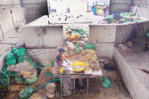 fertilizer projects in Pune
