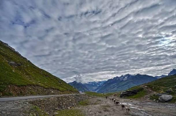 मनाली- डोंगर, दऱ्यांमध्ये असणाऱ्या एका सुरेख आणि निसर्गरम्य अशा ठिकाणी स्वत:लाच नव्याने भेटण्याची संधी मनालीमध्ये आल्यावर मिळते. इथे जणू निसर्गाच्या बहुविध लिलाच पाहायला मिळतात. (छाया सौजन्य-  thewanderer7562/Wikimedia Common)