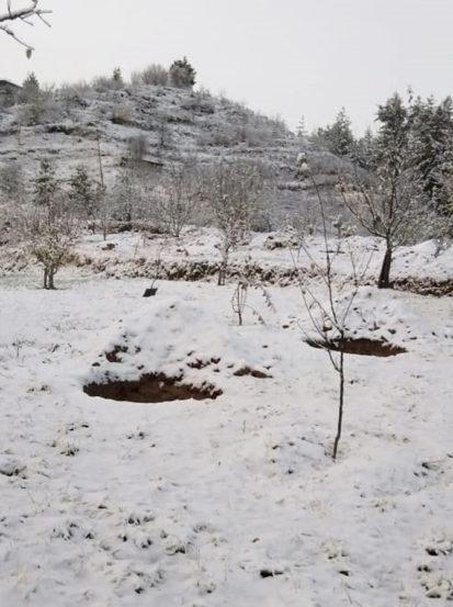 हिमाचल प्रदेशमधील मनढोल गावातील दृष्य