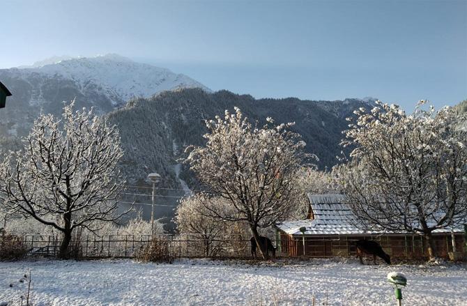 हिमाचल प्रदेशमधील किन्नौर जिल्ह्यातील सांगळा व्हॅली येथील बर्फवृष्टीनंतरचे हे दृष्य. मागील दोन दिवसांपासून हिमाचल प्रदेश, उत्तराखंड राज्यांमध्ये बर्फवृष्टी होत असून पर्यटनस्थळे म्हणून लोकप्रिय असणाऱ्या शिमला, कुलू, मनाली ही शहरे या बर्फवृष्टीमुळे डोळ्यात साठवून ठेवावीत इतकी सुंदर दिसत आहेत. बर्फवृष्टीनंतरच्या याच मेकओव्हरवर टाकलेली ही नजर. (सर्व फोटो साभार: एएनआय वृत्तसंस्था)