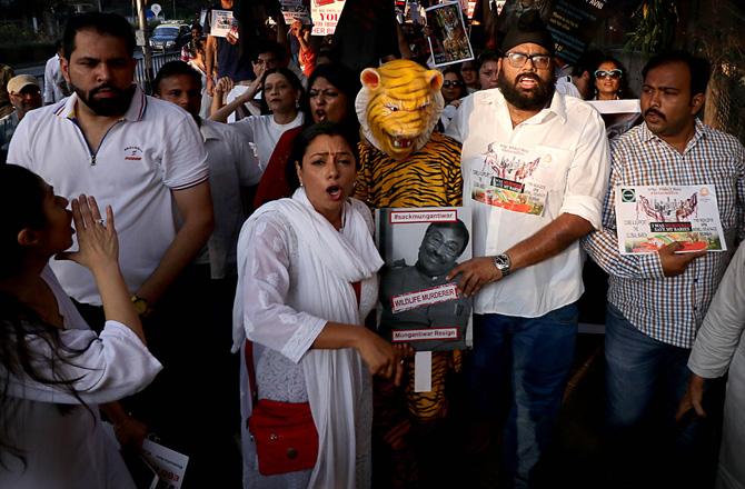 प्राणीप्रेमींसह मुंबई काँग्रेस अध्यक्ष संजय निरुपम, काँग्रेस नेत्या प्रिया दत्त, 'मनसे'च्या वाहतूक सेनेचे नितीन नांदगावकर, अभिनेत्री रुपाली गांगुली उपस्थित होते.
