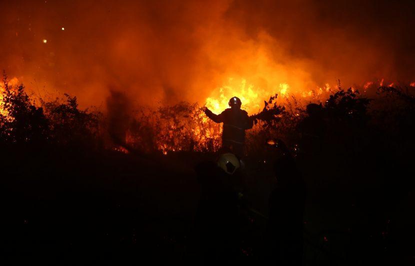 दरम्यान या आगीची उच्चस्तरीय चौकशी करण्याचा आदेश देण्यात आला आहे. (Express Photo: Dilip Kagda)