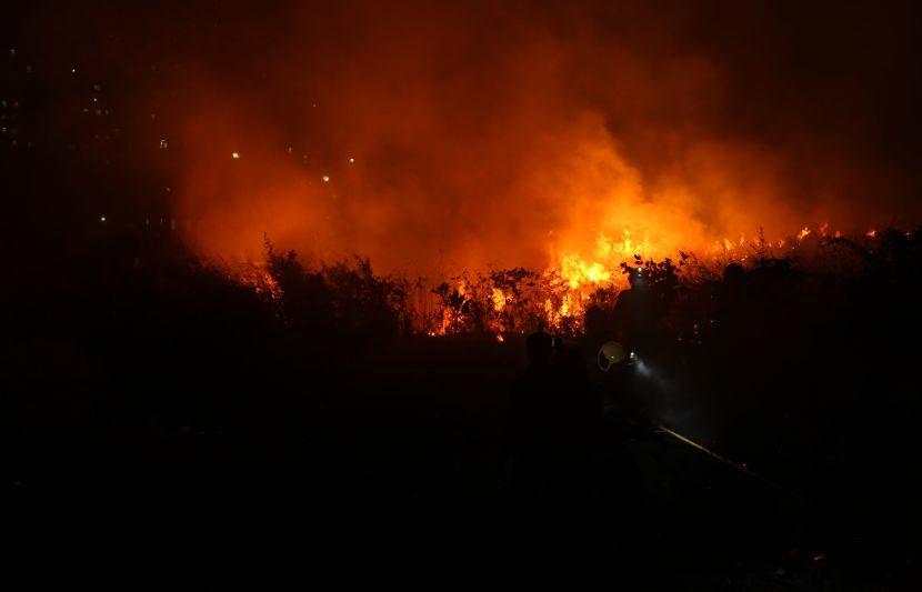 या आगीमागे मोठं षडयंत्र असल्याचा आरोप केला जात आहे. आरे कॉलनीतील जमीन मिळवण्यासाठी जाणुनबुजून ही आग लावण्यात आल्याच आरोप होत आहे. (Express Photo: Dilip Kagda)