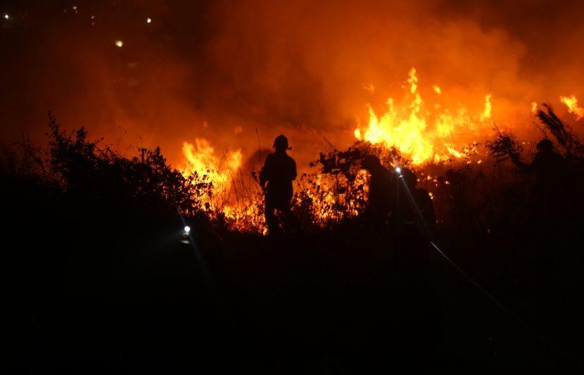 आरे कॉलनीतील इन्फिनिटी पार्कजवळील जंगलात ही भीषण आग लागली होती. (Express Photo: Dilip Kagda)