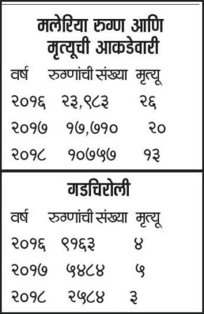 Malaria in Maharashtra | तीन वर्षांत हिवतापबळींचे प्रमाण राज्यात निम्म्यावर