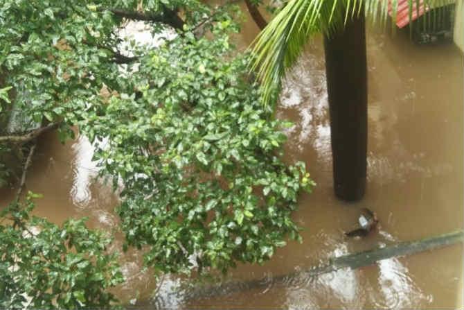 बदलापुरात मुसळधार पावसाने कहर माजवला अनेक सखल भागांमध्ये पाणी साठलं होतं. रेल्वे रुळ पाण्याखाली गेले